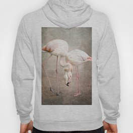 The convoluted conversation of the necks Hoody