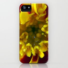 Spring Bloom iPhone Case