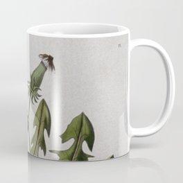 Botanical Dandelion Coffee Mug