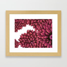 Flowers dance Framed Art Print