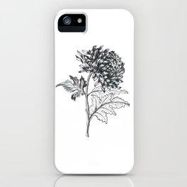 Ink pen chrysanthemum iPhone Case
