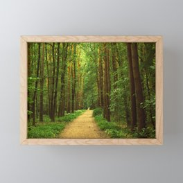 Forest path Framed Mini Art Print