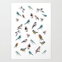 I love birds Art Print