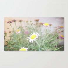Photography by Ruth Fitta Schulz Canvas Print