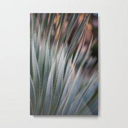 Arizona Agave Metal Print