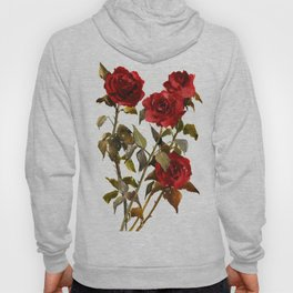 Burgundy Red Roses, deep red floral olive green dark red design roses from garden Hoody