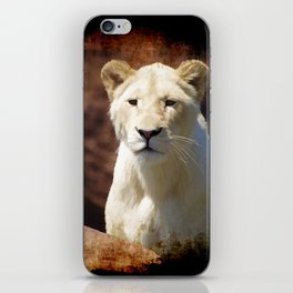 African White Lion iPhone Skin