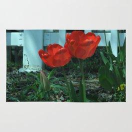 Tulip Family Rug