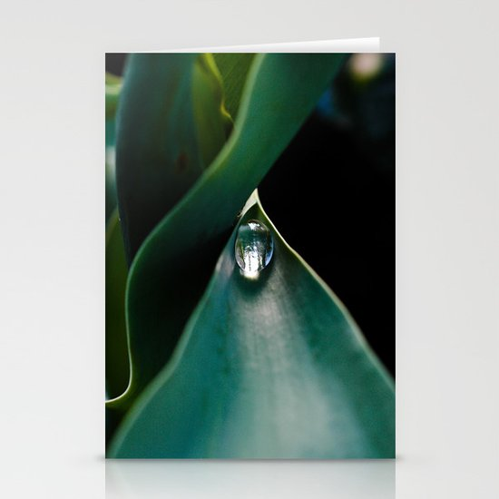 A drop caught Stationery Cards