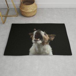 Jack Russell Terrier 9 Rug