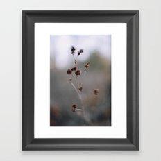 oklahoma .  Framed Art Print