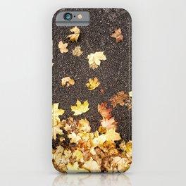Gold yellow maple leaves autumn asphalt road iPhone Case