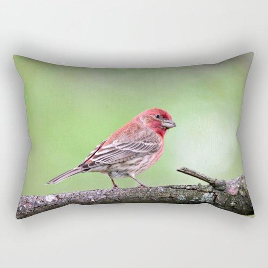 Fancy Finch Rectangular Pillow