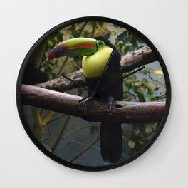 National Aviary - Pittsburgh - Keel Billed Toucan 1 Wall Clock