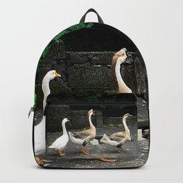 Geese walking in a line Backpack