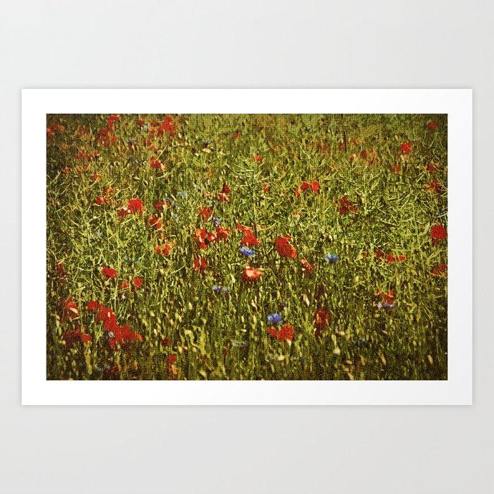 Sommerfeld MIT roten und blauen Blumen Art Print