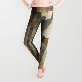 Eucalyptus Tree Exfoliating Bark Abstract Leggings