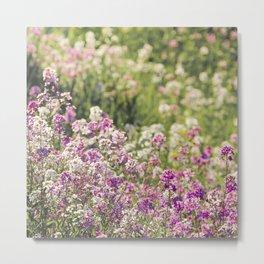 Pink Wildflowers Metal Print