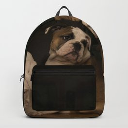 Four Bulldog Puppies Backpack
