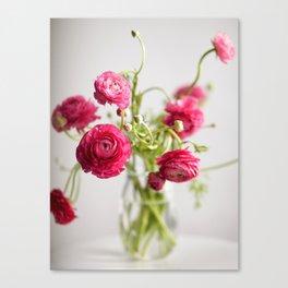 Ranunculus, color Canvas Print