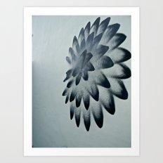 Urban Flower Art Print