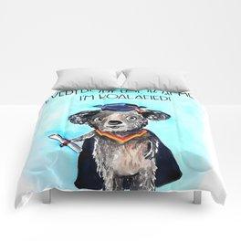 Koala Graduation Comforters