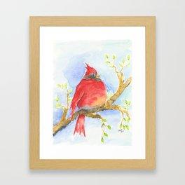 Mr. Cardinal Framed Art Print