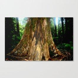 Mountain Ash Tree Canvas Print
