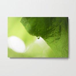 The Hearts Rain Drop - Green Metal Print