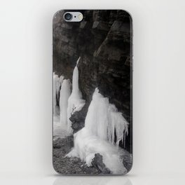 Coastal Waterfall Ice iPhone Skin