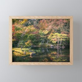 Wonderful colors at the Japanese Zen Garden at Golden Pavilion, Kyoto, Japan. Framed Mini Art Print