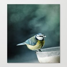 Lunch Time ! ! ! Canvas Print