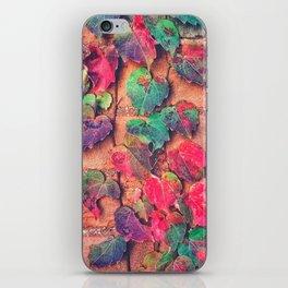 Heaven is Here iPhone Skin