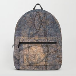 WARM WINTER WALLS OF ZION CANYON Backpack