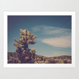 Cholla Cactus Garden II Art Print
