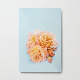 Perfect colours Metal Print