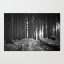 Forest (Black and White) Canvas Print