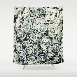 Rosette Shower Curtain
