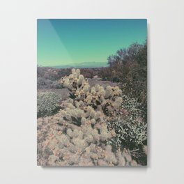 Cholla Bloom Metal Print