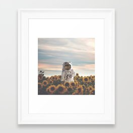The Sunflower Galaxy, Messier 63 Framed Art Print