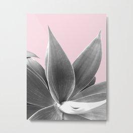 BW Agave on Pink Metal Print