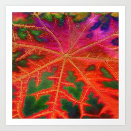 Leaf Incredible Art Print