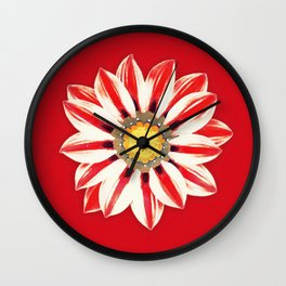 African Daisy / Gazania - Red and White Striped Wall Clock