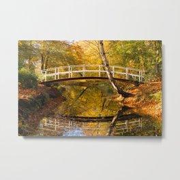 Bridge in the park Metal Print