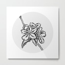 Apple blossom by ink Metal Print