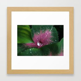 raindrops on fresh starts Framed Art Print