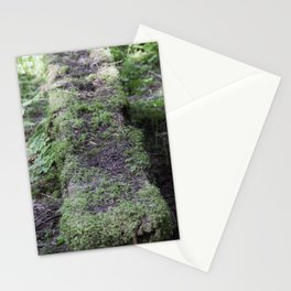 Nature reclaiming picnic bench Stationery Cards