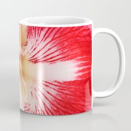 Spectacular Amaryllis Flower in Vibrant Magenta Pink Coffee Mug