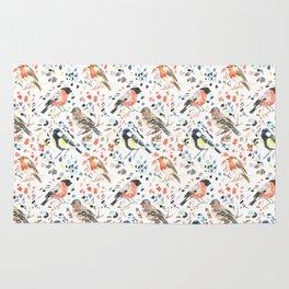 Watercour Painted British Birds Rug