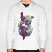 koala Hoodies featuring Koala by Amy Hamilton